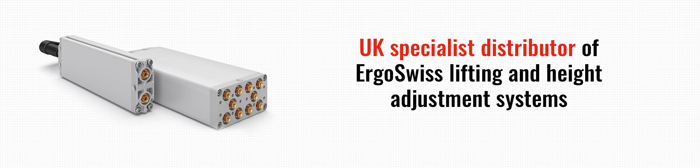 ErgoSwiss Products 1