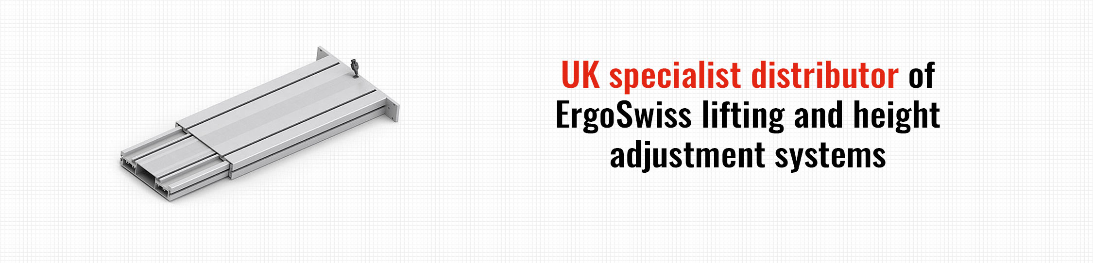 ErgoSwiss Products 2