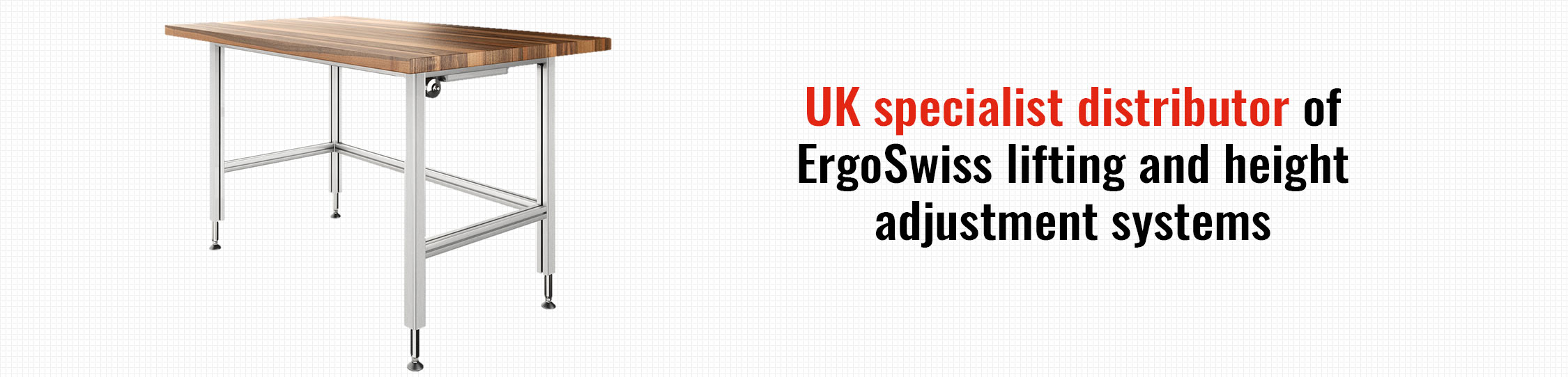 ErgoSwiss Products 3